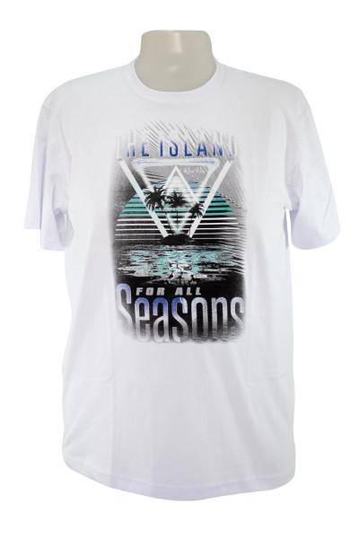 Camiseta Gola Careca - Modelo  2653